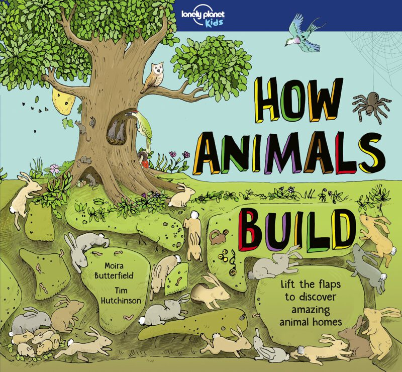 How Animals Build