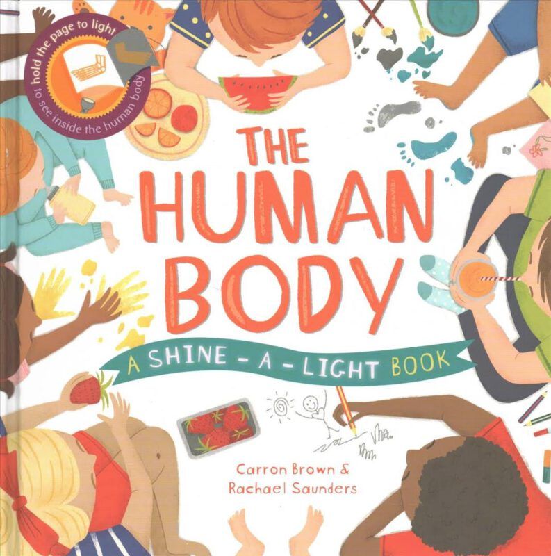 Shine-A-Light: Human Body