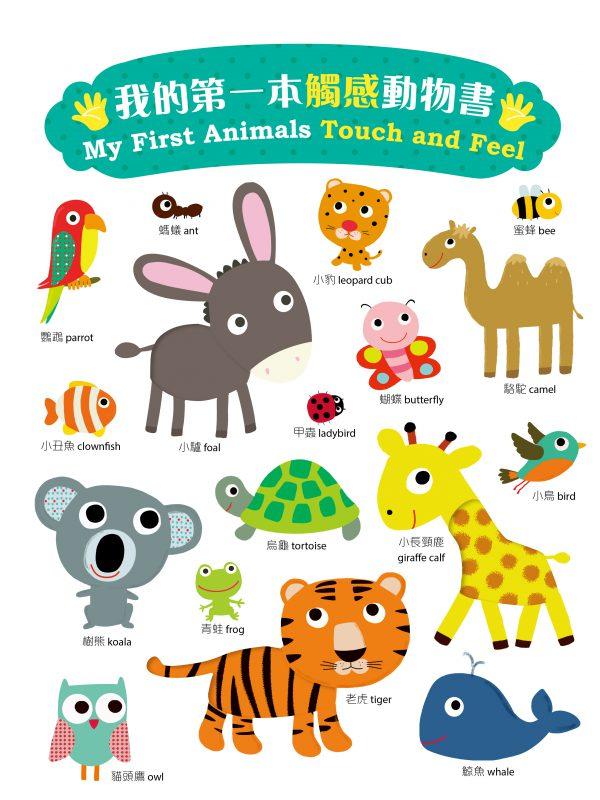 我的第一本觸感動物書